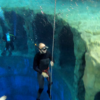 romauld freedive